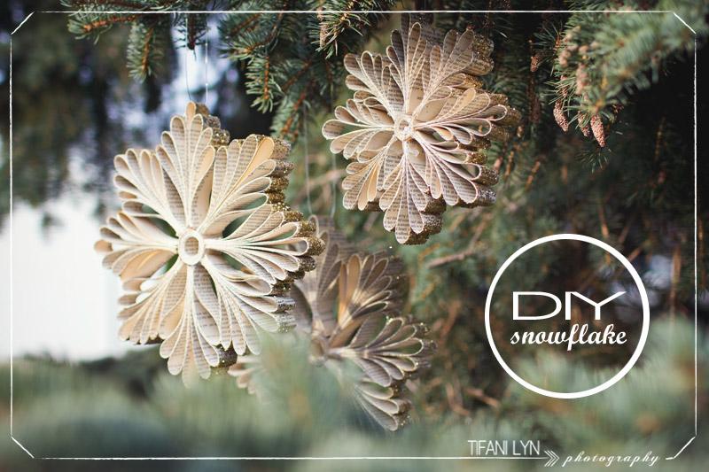 (6)DIY-Christmas-Snowflake-Tifani-Lyn-16